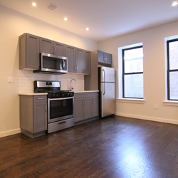 A $1,700.00, 1 bed / 1 bathroom apartment in PLG: Prospect Lefferts Gardens