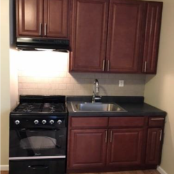 A $1,650.00, 1 bed / 1 bathroom apartment in Flatbush