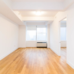 A $5,300.00, 1 bed / 1 bathroom apartment in Tribeca