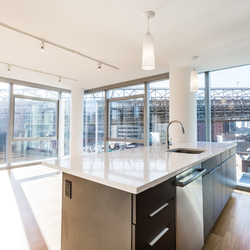 A $4,102.00, 1 bed / 1 bathroom apartment in DUMBO