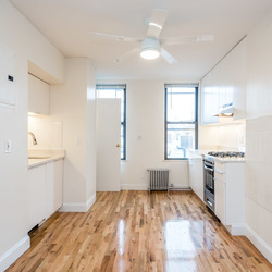 A $2,450.00, 2 bed / 1 bathroom apartment in Greenpoint
