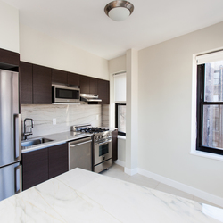 A $4,900.00, 1 bed / 1 bathroom apartment in West Village