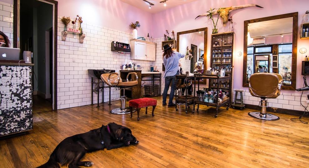 Pickthorn salon 5