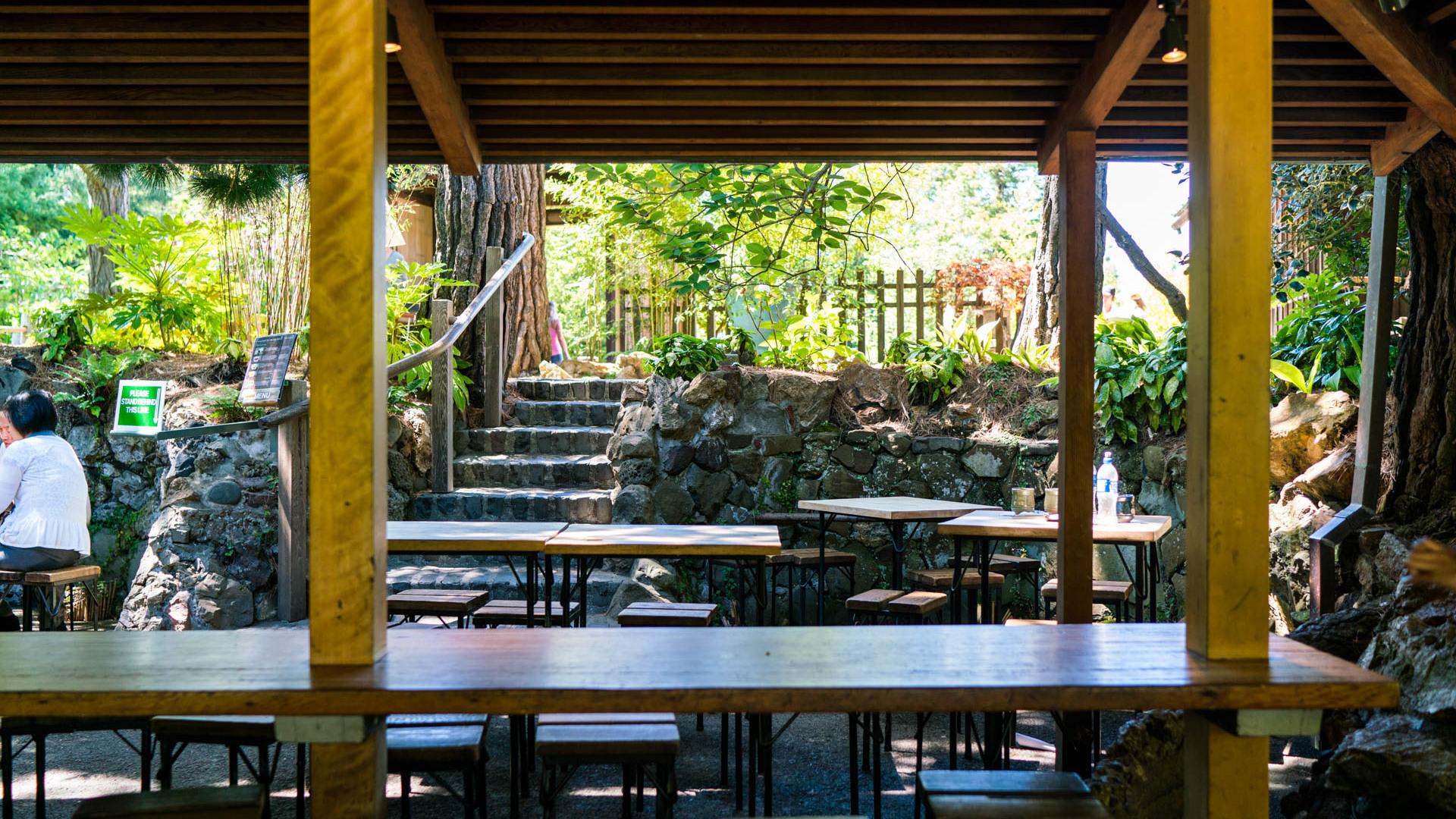 Japanese tea garden 10