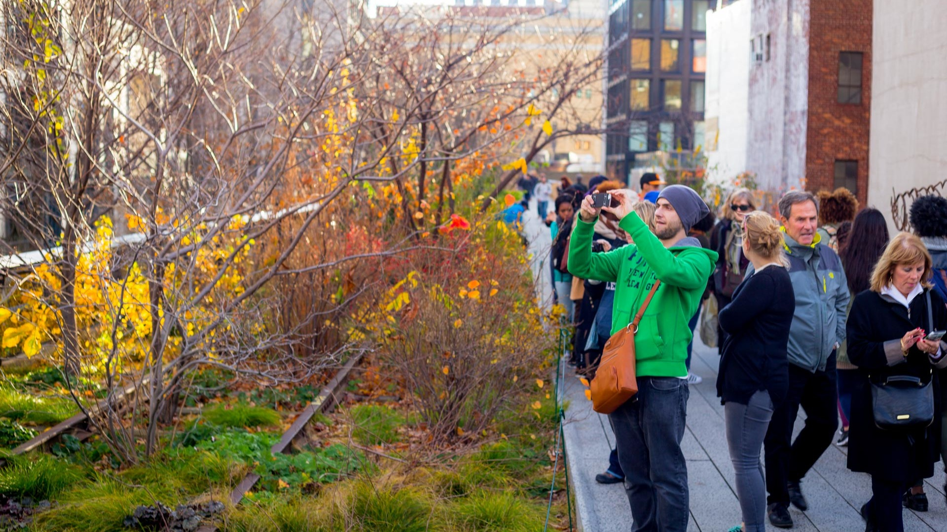 The high line 1