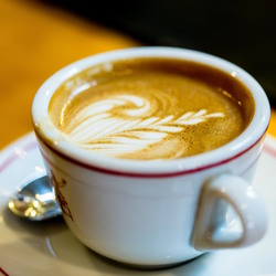 Caffe vita coffee roasting company   roastery 18 copy