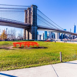 Brooklyn bridge park picnic grove 1