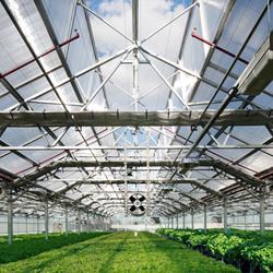 Farm greenhouses 4