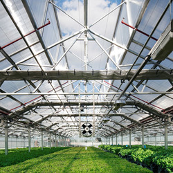 Farm greenhouses 4
