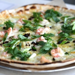 265 harrys pizzeria 4073