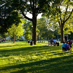 Irving square park 4