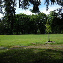 Seattle   jefferson park golf course 01