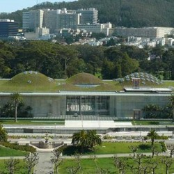 California academy of sciences 586x286