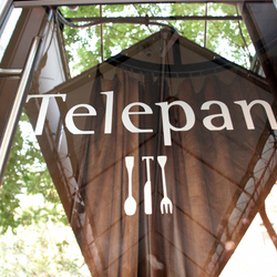 Telepan door gallery