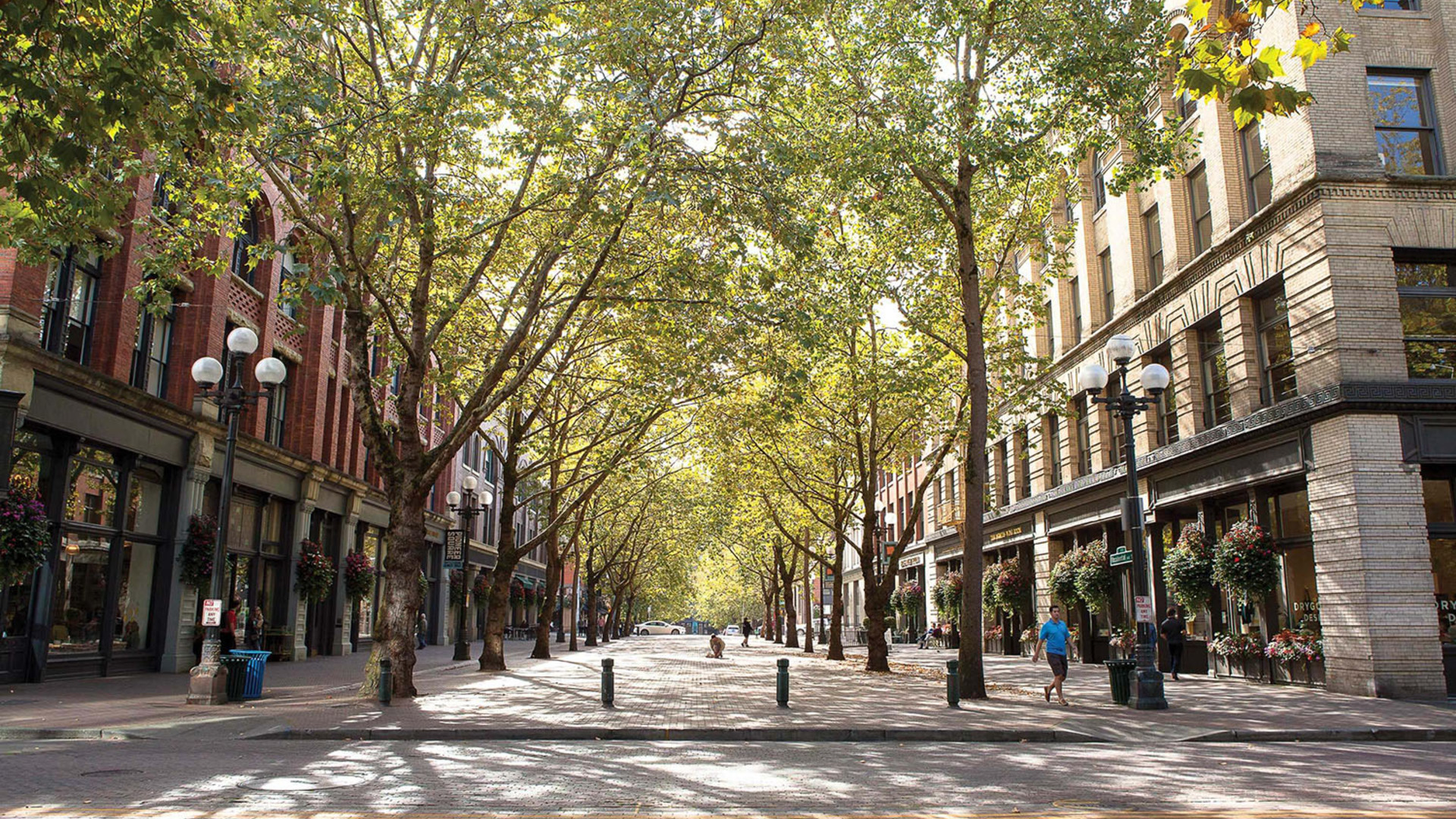 Occidental square   photo by olivia brent crop