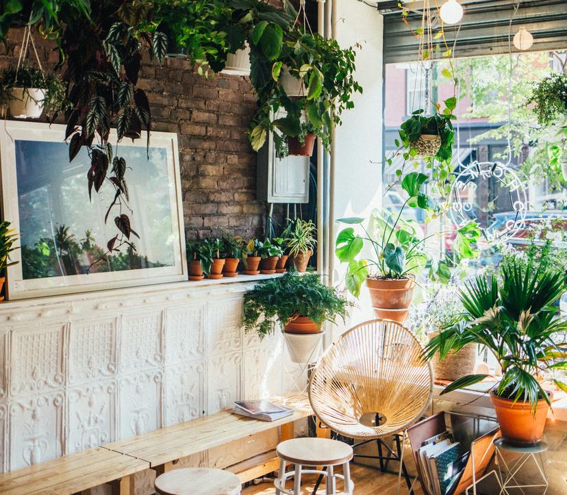 Greenpoint Apartments: Brooklyn On Nooklyn: Apartments, Roommates, Neighborhoods