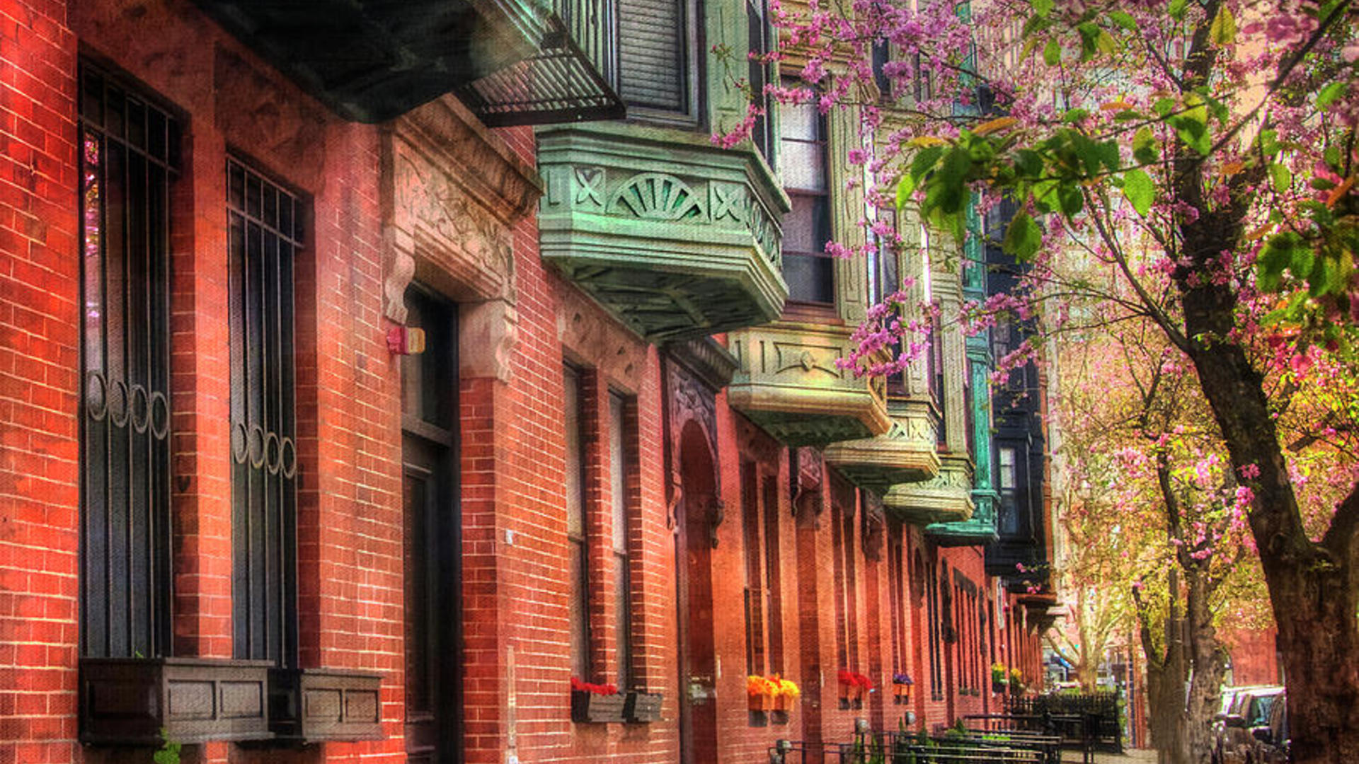Bay village brownstones and cherry blossoms boston joann vitali