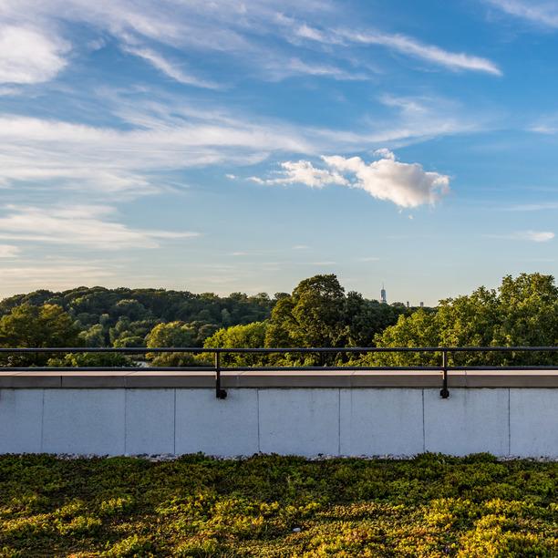 123 parkside avenue rooftop 7