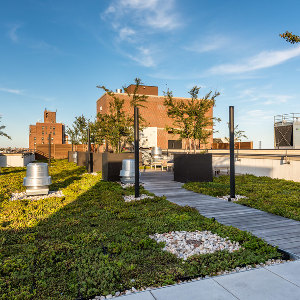 123 parkside avenue rooftop 3 1