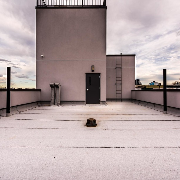 1825 palmetto street rooftop 9 %281%29