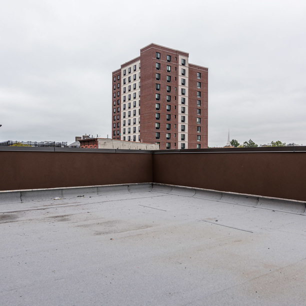 019 368 throop avenue rooftop 2