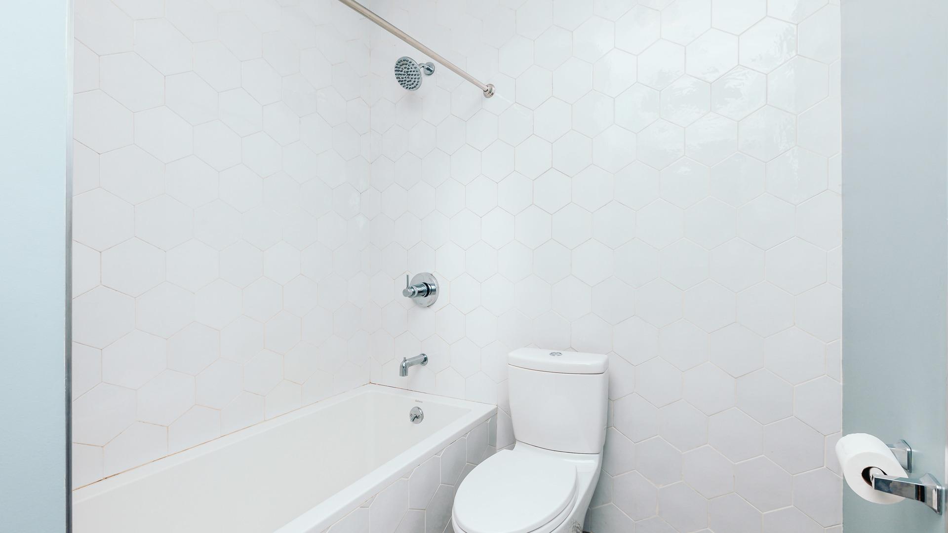 1033 flushing unit2l 3