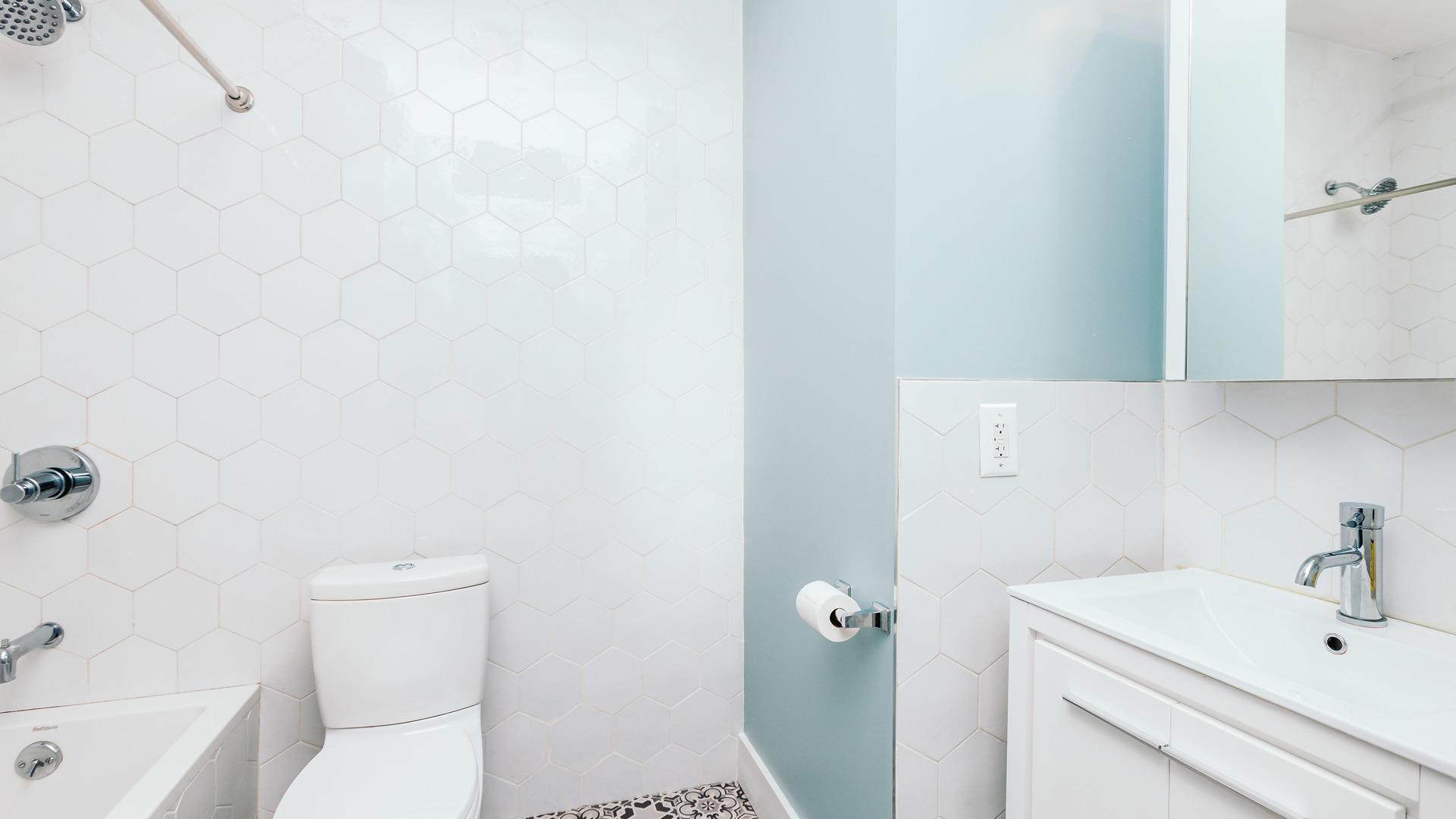 1033 flushing unit2l 4