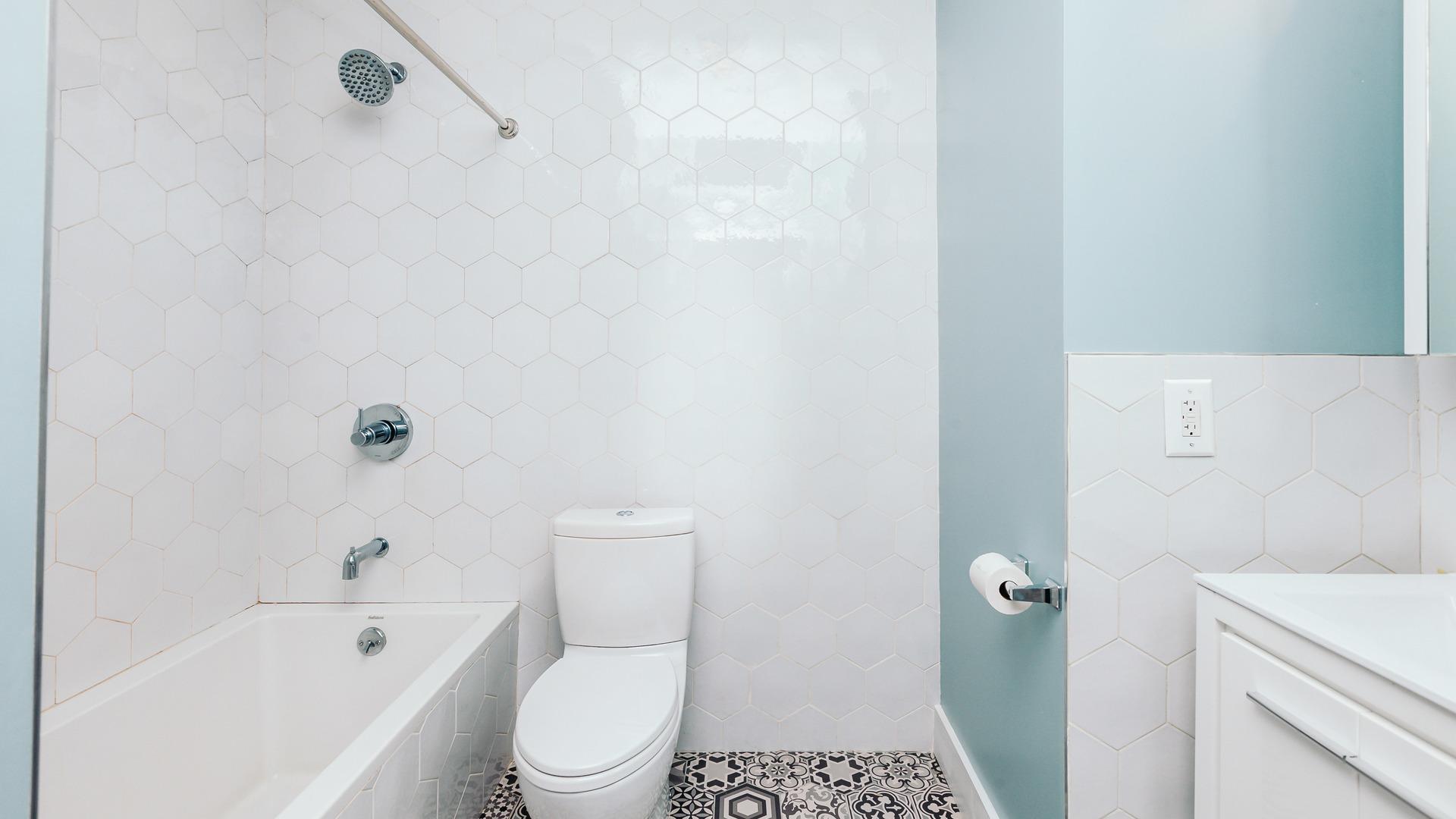 1033 flushing unit2l 5