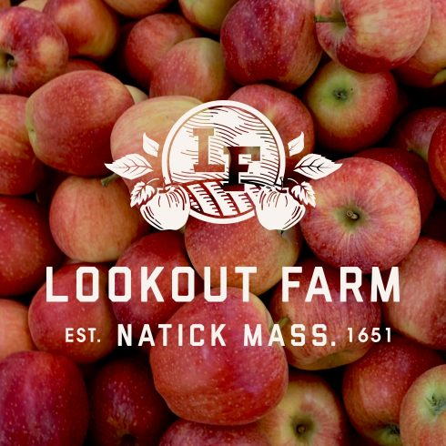 Crafting an identity and labeling system for a micro brew and cider brand.