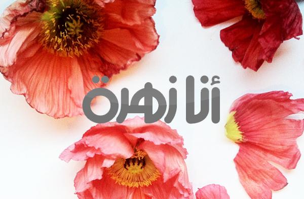 Anazahra2