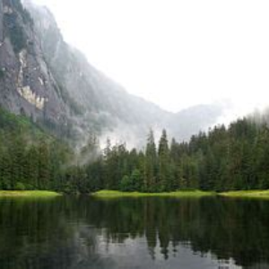The Tongass Faces Attack