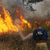Read more about Causes and Concerns as Wildfires Rage