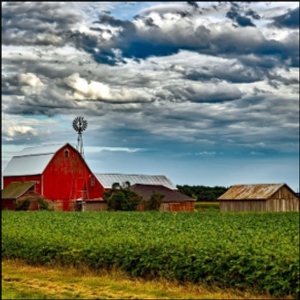 Farm-fed Energy with Anaerobic Digestion