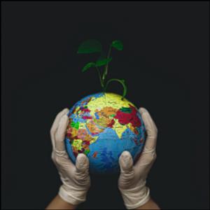 Producing Pandemics: Human Incursion into Nature