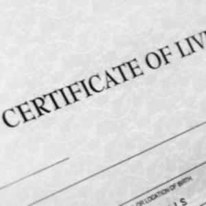 Adoptees will soon have the right to access their New York birth certificates