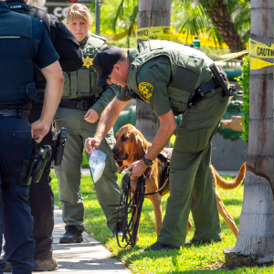 California university consultant killed in campus stabbing