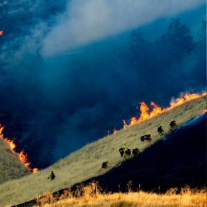 Wildfire acreage way down in California this year — so far