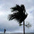 Read more about Dorian strikes Bahamas with record fury as Category 5 storm
