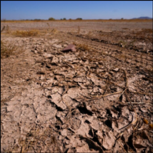 Much of U.S. Southwest left parched after monsoon season