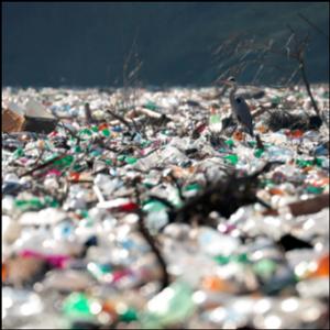 Islands of garbage clog rivers, threaten dam in Balkans