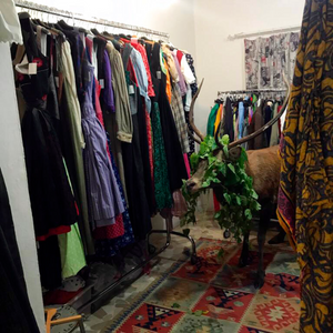 Dazed and confused deer gets trapped in Italy's resort shop