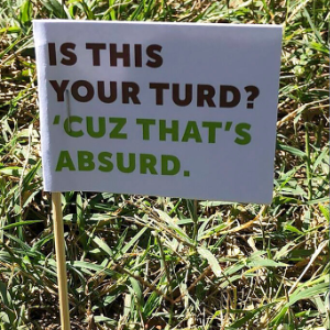 'Is this your turd?': Missouri city's cleanup flags dog poop