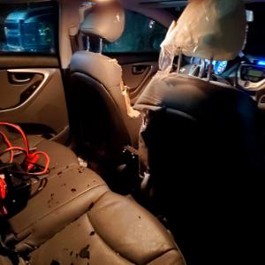 Bear blamed for car damages in Alaska airport parking lot