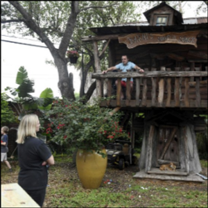 South Texas ER doctor self-isolates in his kids' treehouse