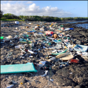 EPA finds plastic trash contaminates 2 remote Hawaii beaches