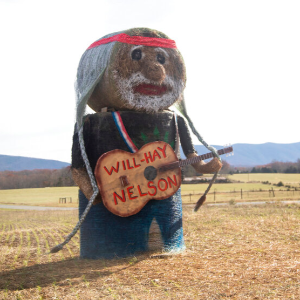 'On the Farm Again': Woman makes hay replica of Willie Nelson