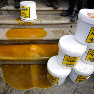 German beekeepers stage sticky protest on ministry steps