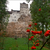 Read more about Dracula's castle proves an ideal setting for COVID-19 jabs