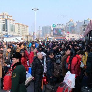 HAUGHT: Second Green Revolution needed to feed burgeoning population