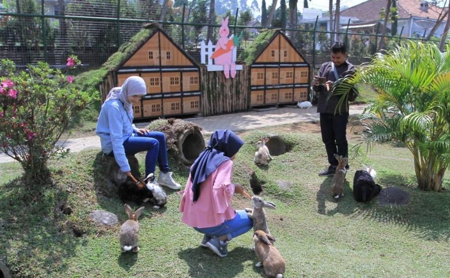 Rekomendasi Tempat Wisata Anak Ciwidey yang Menyenangkan
